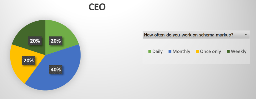 CEO Pie Chart