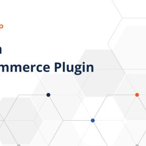 Schema WooCommerce Plugin